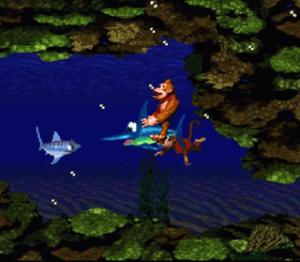 Le monde sous-marin avec l'espadon dans Donkey Kong Country sur Super Nintendo