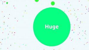 record de taille dans le jeu vidéo agar io